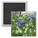 Hillside of Early Spring Flowers Landscape Magnet