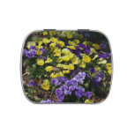 Hillside of Purple and Yellow Pansies Jelly Belly Candy Tin
