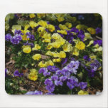 Hillside of Purple and Yellow Pansies Mouse Pad