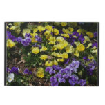 Hillside of Purple and Yellow Pansies Powis iPad Air 2 Case