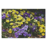 Hillside of Purple and Yellow Pansies Tissue Paper