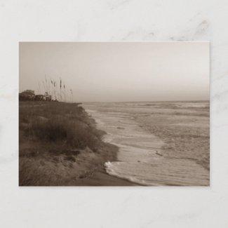 Hilton Head Island Shoreline Postcard / Sephia zazzle_postcard