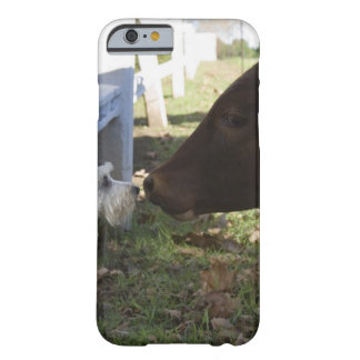 Hilton, Midlands, KwaZulu Natal Province, South Barely There iPhone 6 Case