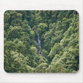 Himalaya forest in the Mangdue valley, Bhutan Mouse Pad