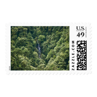 Himalaya forest in the Mangdue valley, Bhutan Postage