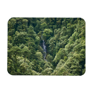 Himalaya forest in the Mangdue valley, Bhutan Rectangular Magnet