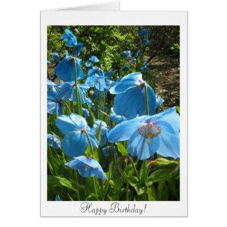 Himalayan Blue Poppy Birthday Card