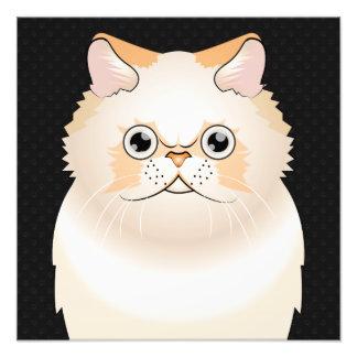 Himalayan Cat Cartoon Paws Photo Print
