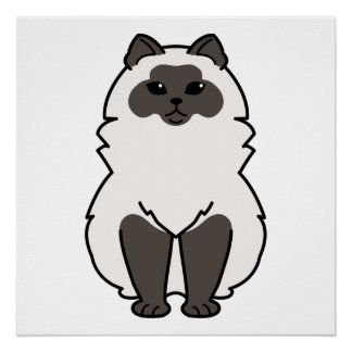 Himalayan Cat Cartoon Poster
