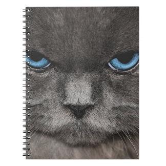 Himalayan Cat Eyes Libros De Apuntes