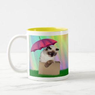 Himalayan Cat in Box Two-Tone Coffee Mug