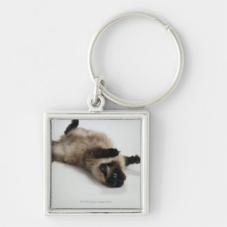 Himalayan Cat Lying on his Back Keychain