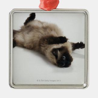 Himalayan Cat Lying on his Back Square Metal Christmas Ornament