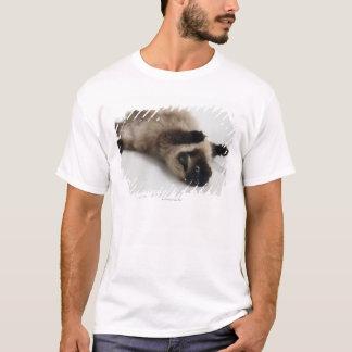 Himalayan Cat Lying on his Back T-Shirt