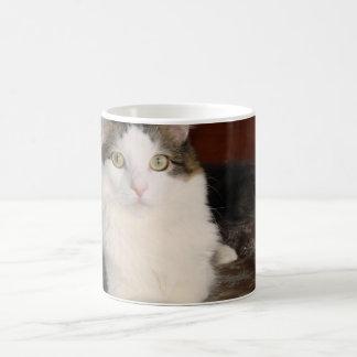 Himalayan Cat Princess Classic White Coffee Mug