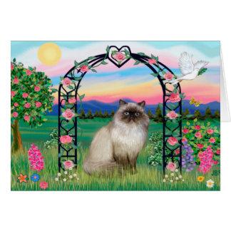 Himalayan Cat - Rose Arbor Card