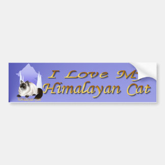 Himalayan Cats Bumper Sticker