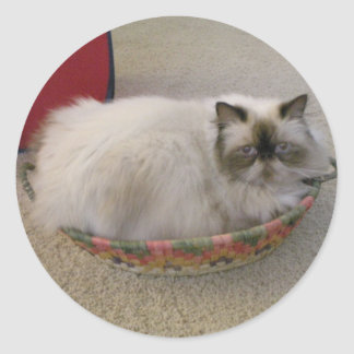 Himalayan  In a Basket Classic Round Sticker