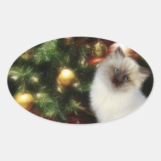 Himalayan kitten Christmas Oval Sticker