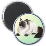 Himalayan Kitty Magnet