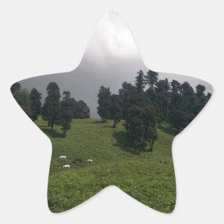 Himalayan Meadows Star Sticker