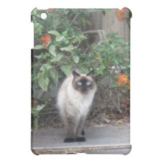 Himalayan Mix cat Cover For The iPad Mini