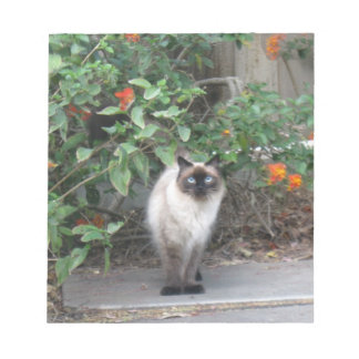 Himalayan Mix Cat Notepad