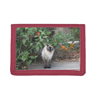 Himalayan Mix Cat Tri-fold Wallets