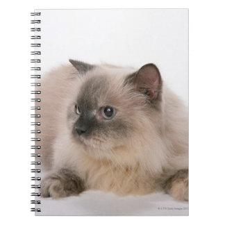 Himalayan Spiral Note Book