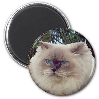 Himalayan Persian Cat Magnet