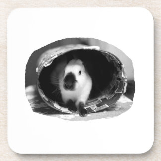 Himalayan Rabbit BW Photo in round can Beverage Coaster