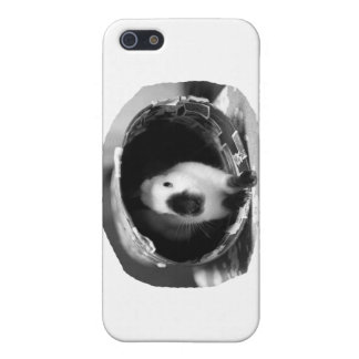 Himalayan Rabbit BW Photo in round can iPhone SE/5/5s Cover