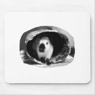 Himalayan Rabbit BW Photo in round can Mousepads