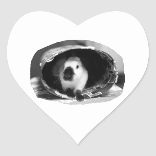 Himalayan Rabbit BW Photo in round can Heart Sticker