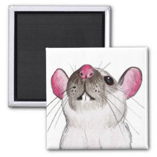 Himalayan rat magnet
