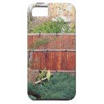 Himeji Japanese Garden, Adelaide 7 iPhone 5 Cases