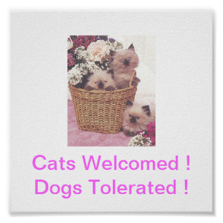 Himilayan Cats Welcome Dogs Tolerated Sign Posters