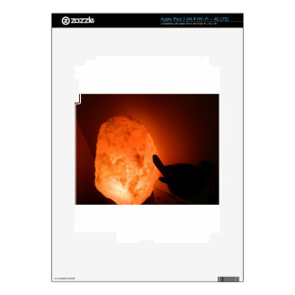 Himilayan Salt Lamp with Bird iPad 3 Skin