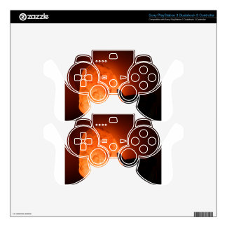 Himilayan Salt Lamp with Bird PS3 Controller Skins