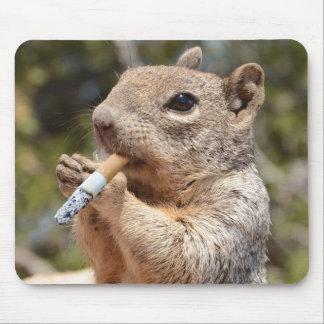 Hinchado el cojín de ratón de la ardilla tapete de ratón