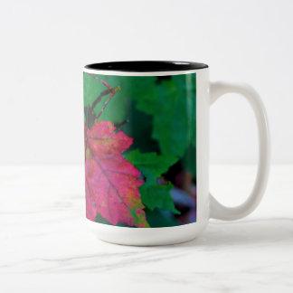 Hint of Autumn Two-Tone Coffee Mug