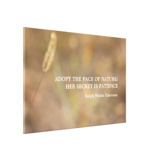 Hint Of Nature Photography Art with Quote Gallery Wrapped Canvas