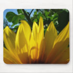 Hint of Sunflower Mouse Pad