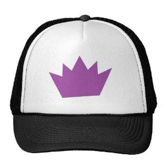HInt Trucker Hat
