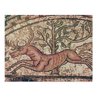 Hinton St. Mary pavement  c.350 AD Postcard