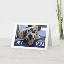 "HIP DOG SAYS ""HEY MOM"" ""HAVE A HAPPY BIRTHDAY"" CARD"
