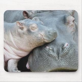 Hipopótamo Alfombrillas De Ratón