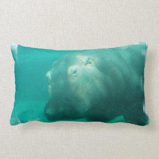 Hipopótamo debajo de la almohada del agua