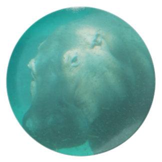 Hipopótamo debajo de la placa del agua plato para fiesta