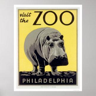 Hipopótamo del parque zoológico del PA de Philadel Impresiones